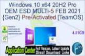 Windows 10 20H2 X64 10in1 OEM ESD en-US APRIL-28 2021 {Gen2}